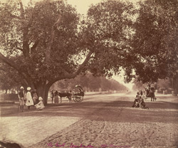 The Mall, Umballa, 1881-84.